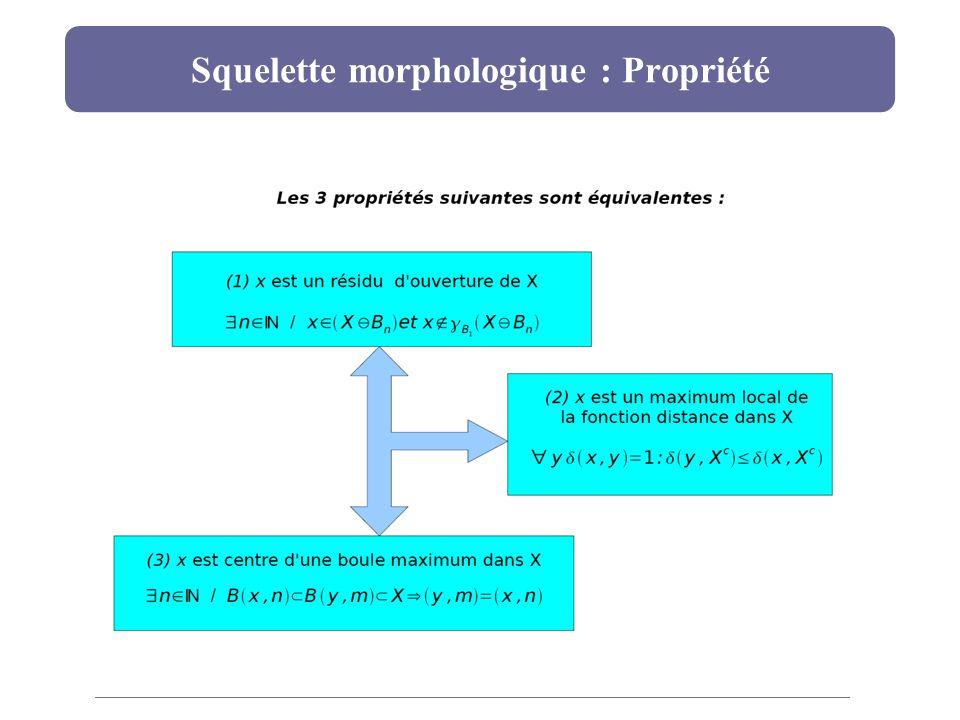 Squelette morphologique : Propriété