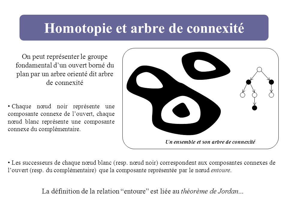 Homotopie et arbre de connexité