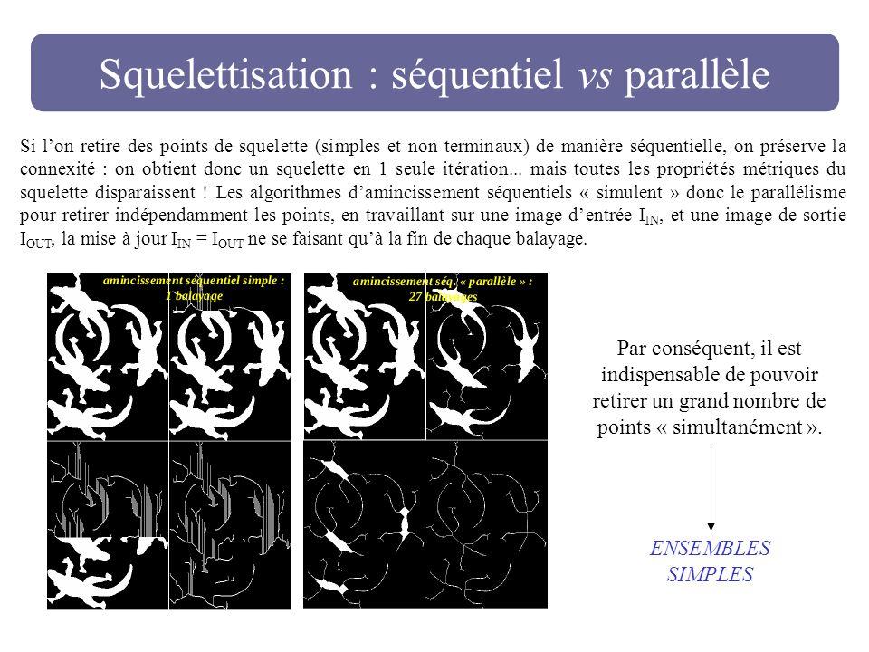 Squelettisation : séquentiel vs parallèle