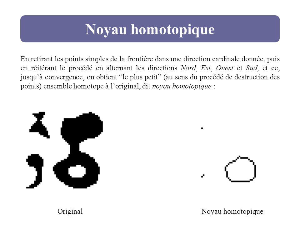 Noyau homotopique