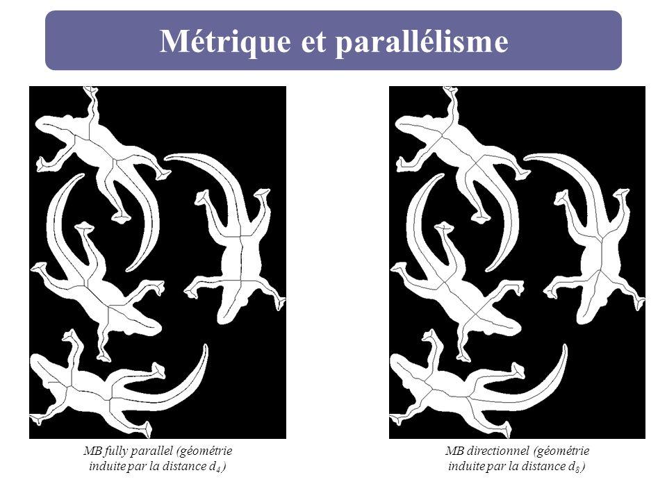 Métrique et parallélisme