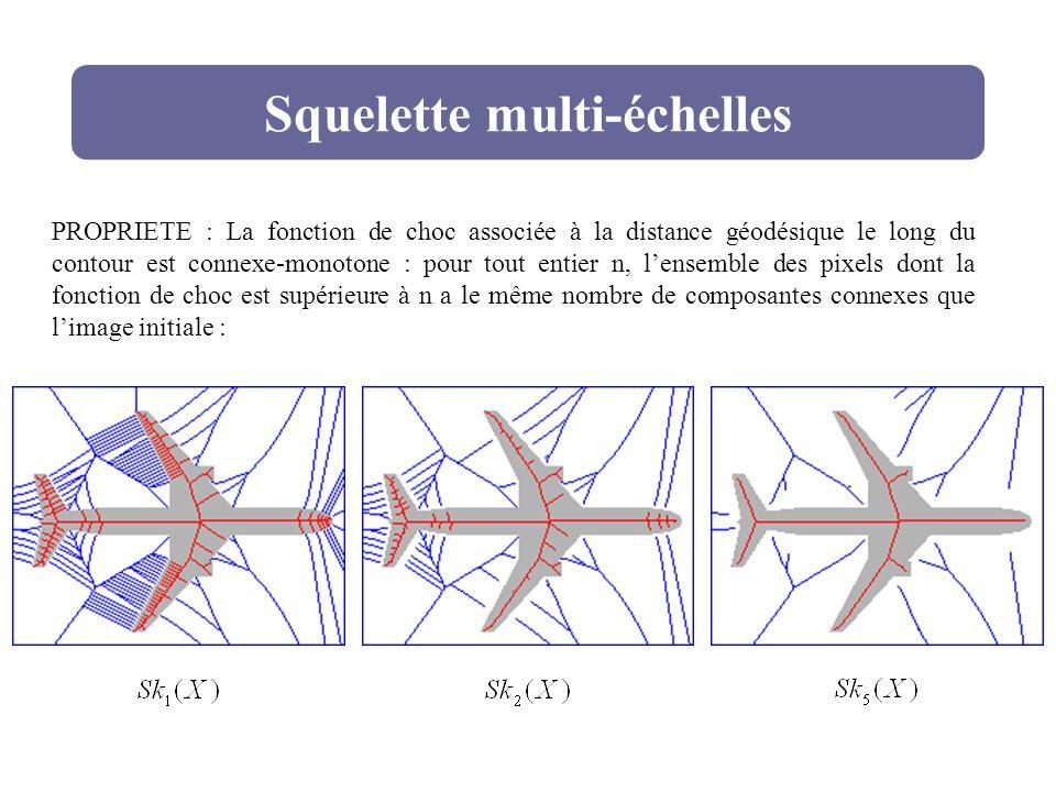 Squelette multi-échelles
