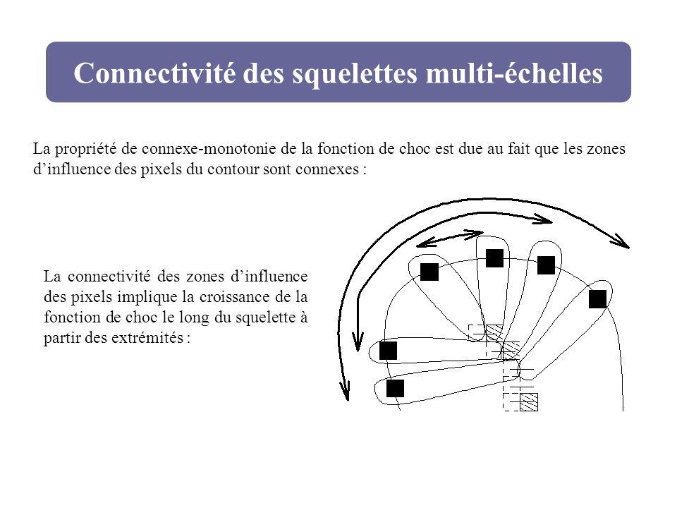 Connectivité des squelettes multi-échelles