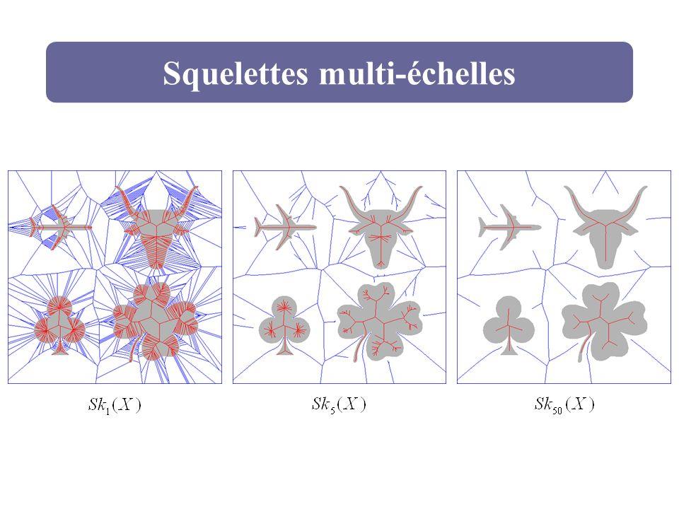 Squelettes multi-échelles