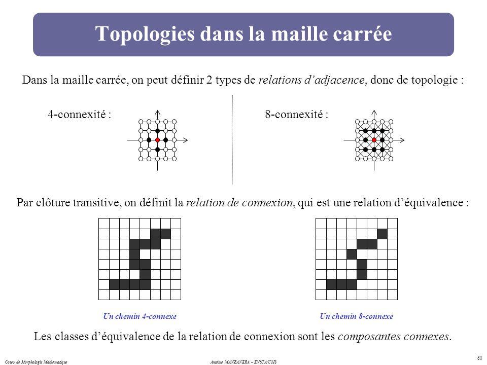 Topologies dans la maille carrée