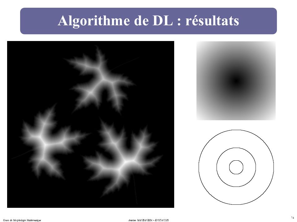 Algorithme de DL : résultats