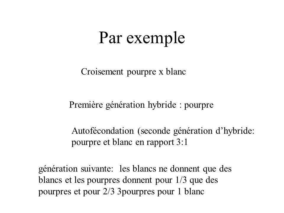 Par exemple Croisement pourpre x blanc