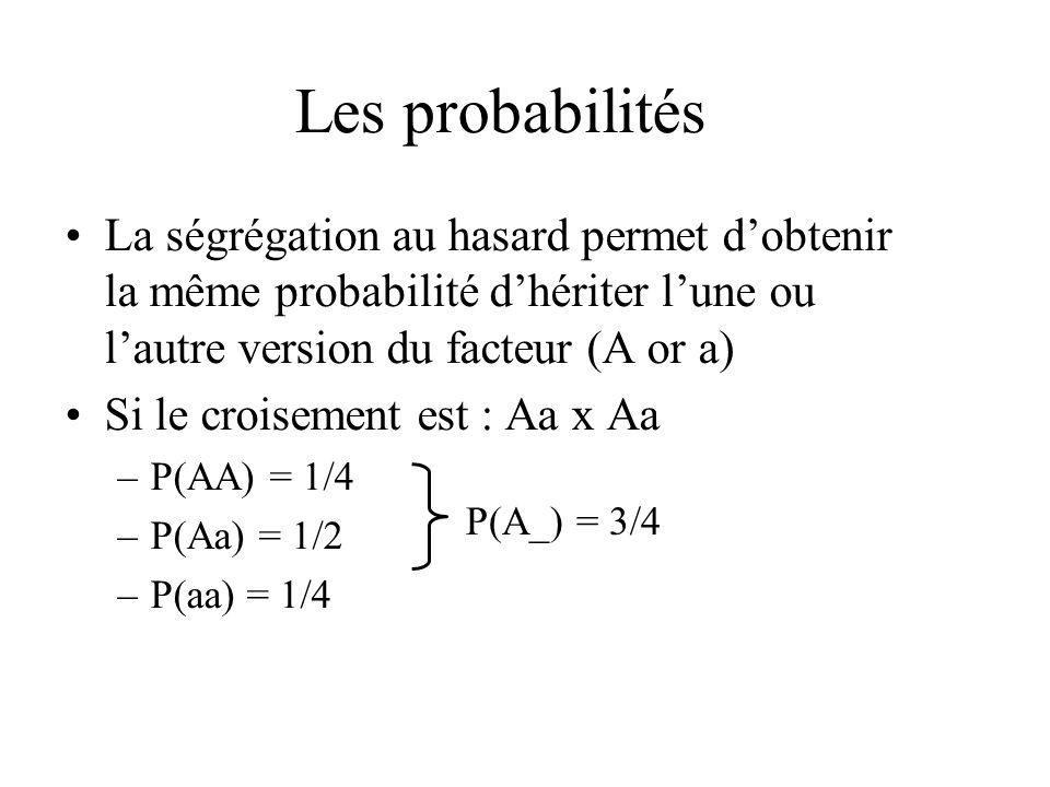 Les probabilités La ségrégation au hasard permet d'obtenir la même probabilité d'hériter l'une ou l'autre version du facteur (A or a)
