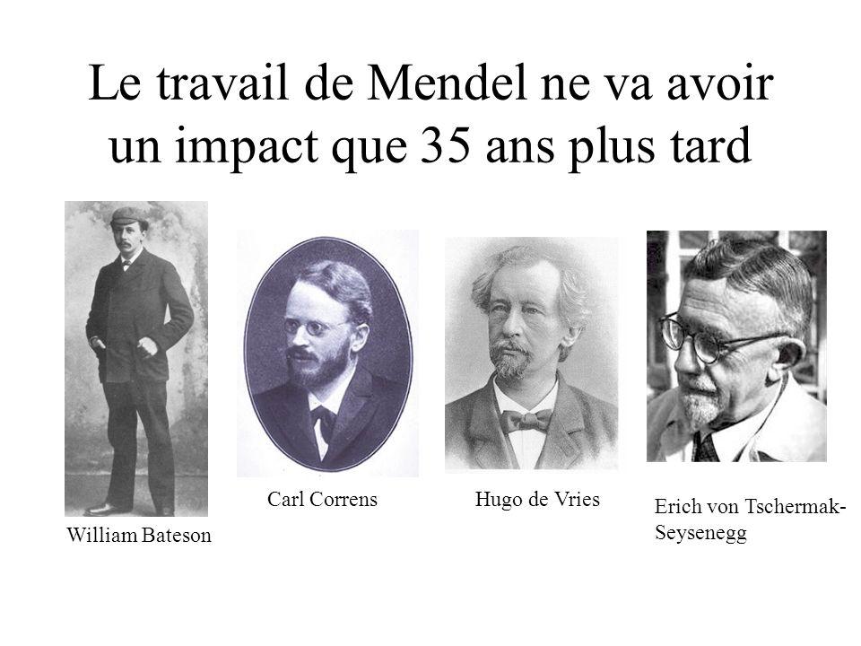 Le travail de Mendel ne va avoir un impact que 35 ans plus tard