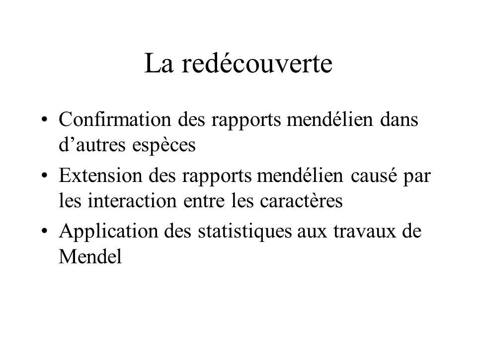 La redécouverte Confirmation des rapports mendélien dans d'autres espèces.