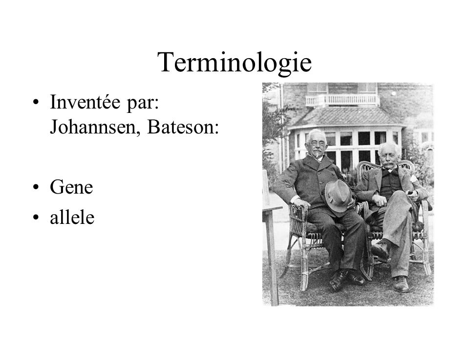 Terminologie Inventée par: Johannsen, Bateson: Gene allele