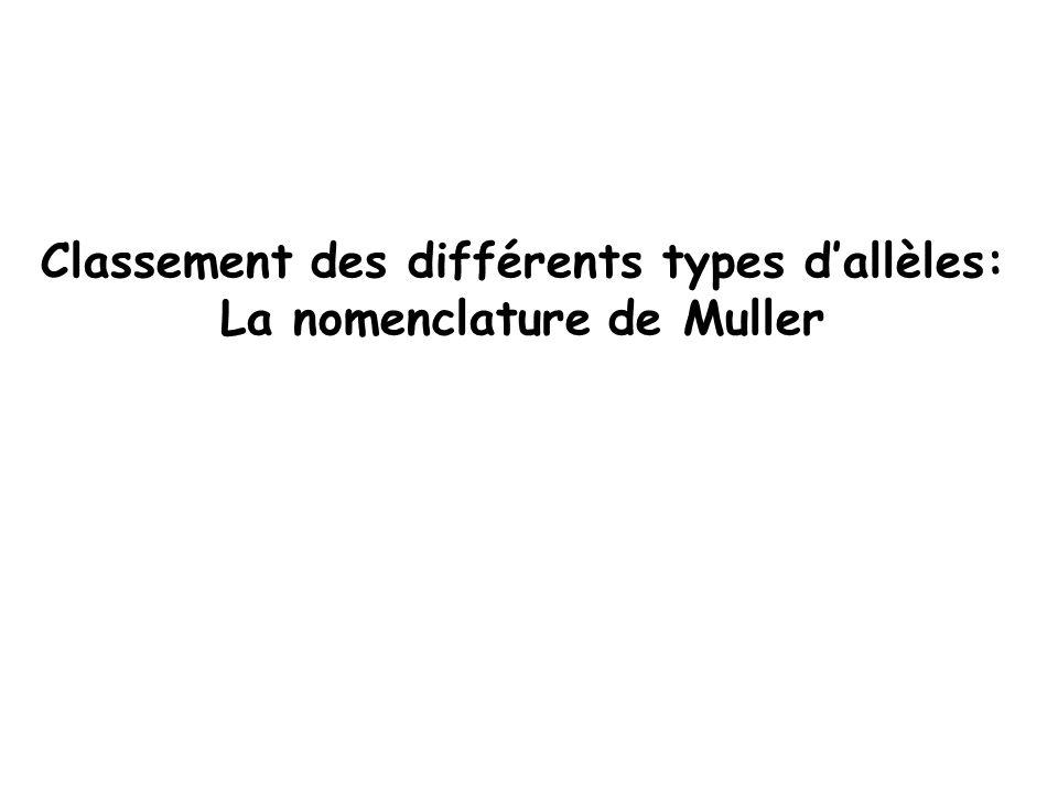 Classement des différents types d'allèles: La nomenclature de Muller