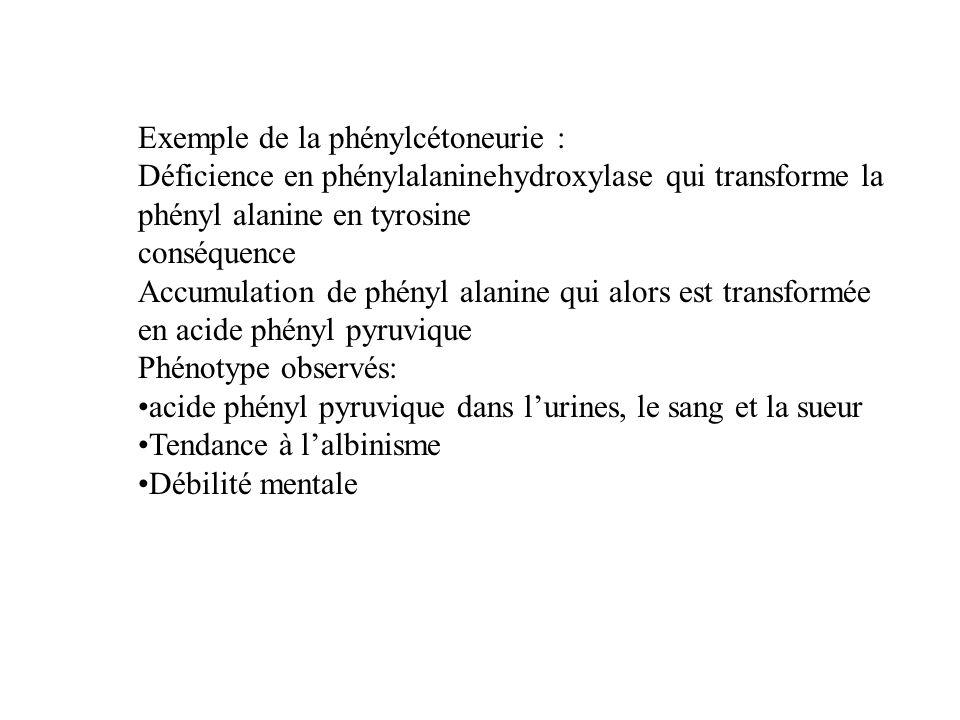 Exemple de la phénylcétoneurie :