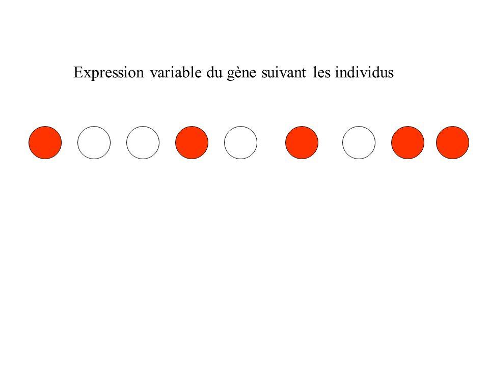 Expression variable du gène suivant les individus