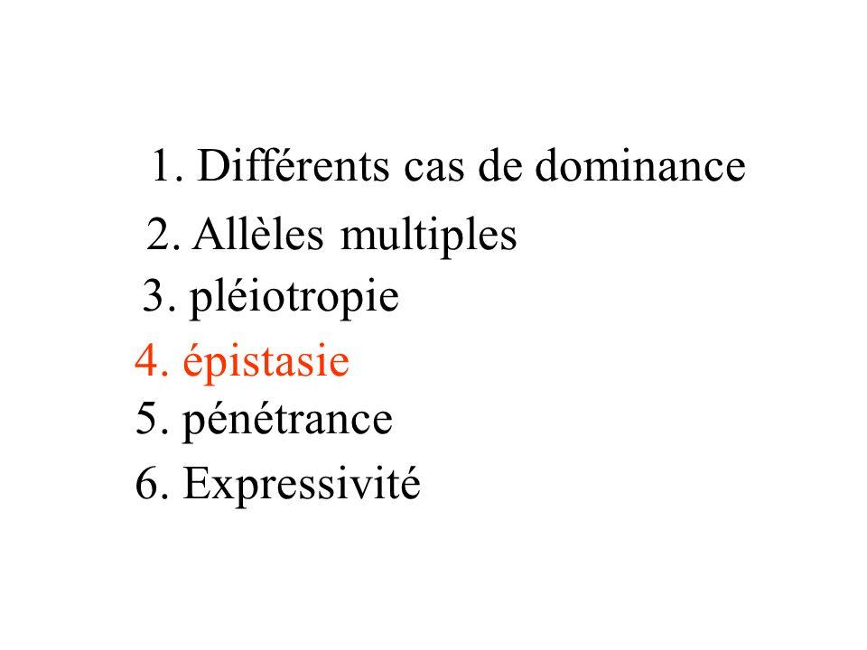 1. Différents cas de dominance