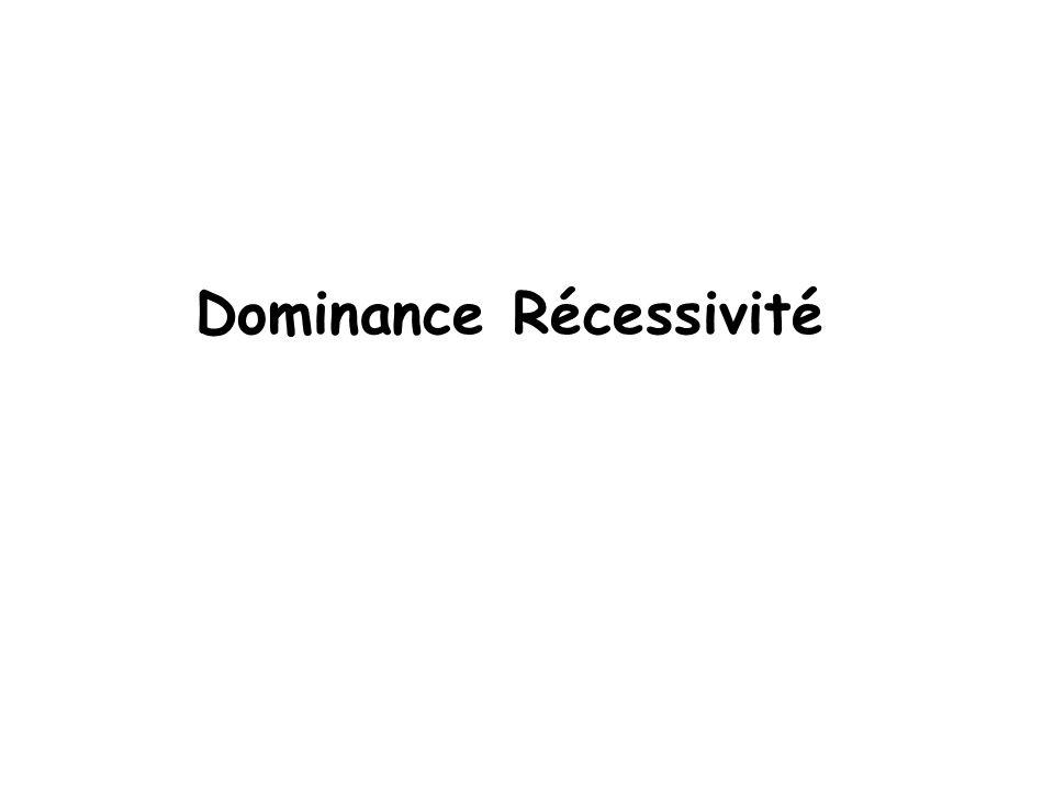 Dominance Récessivité