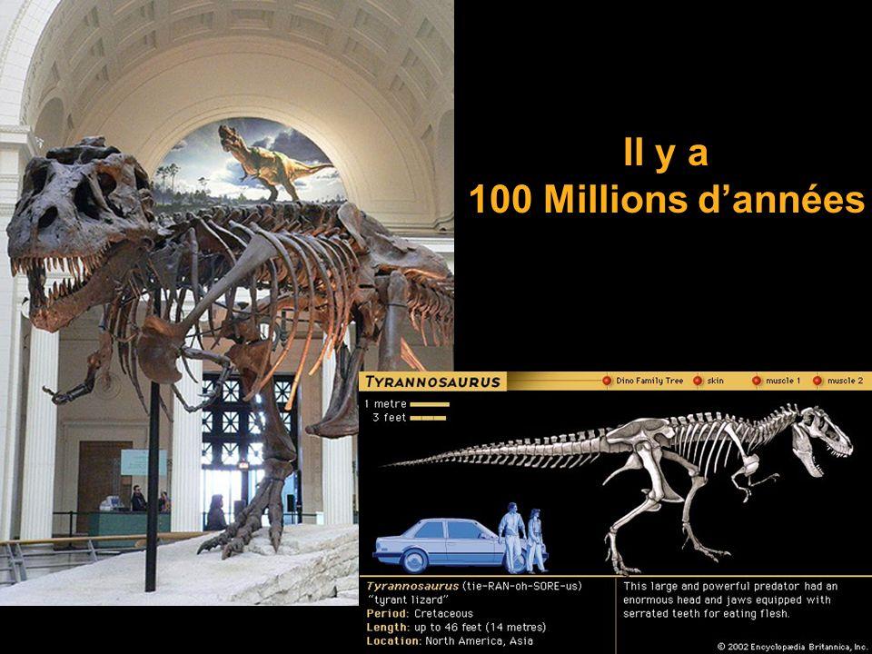 Il y a 100 Millions d'années