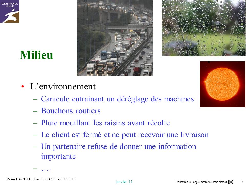 Milieu Milieu L'environnement