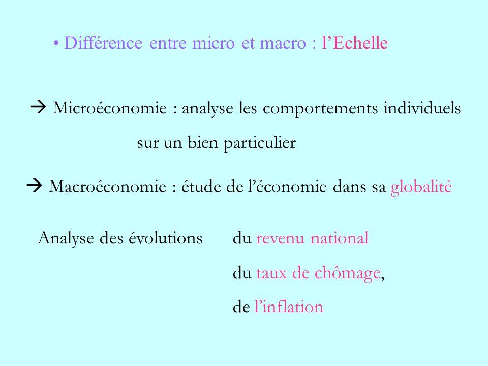 Différence entre micro et macro : l'Echelle