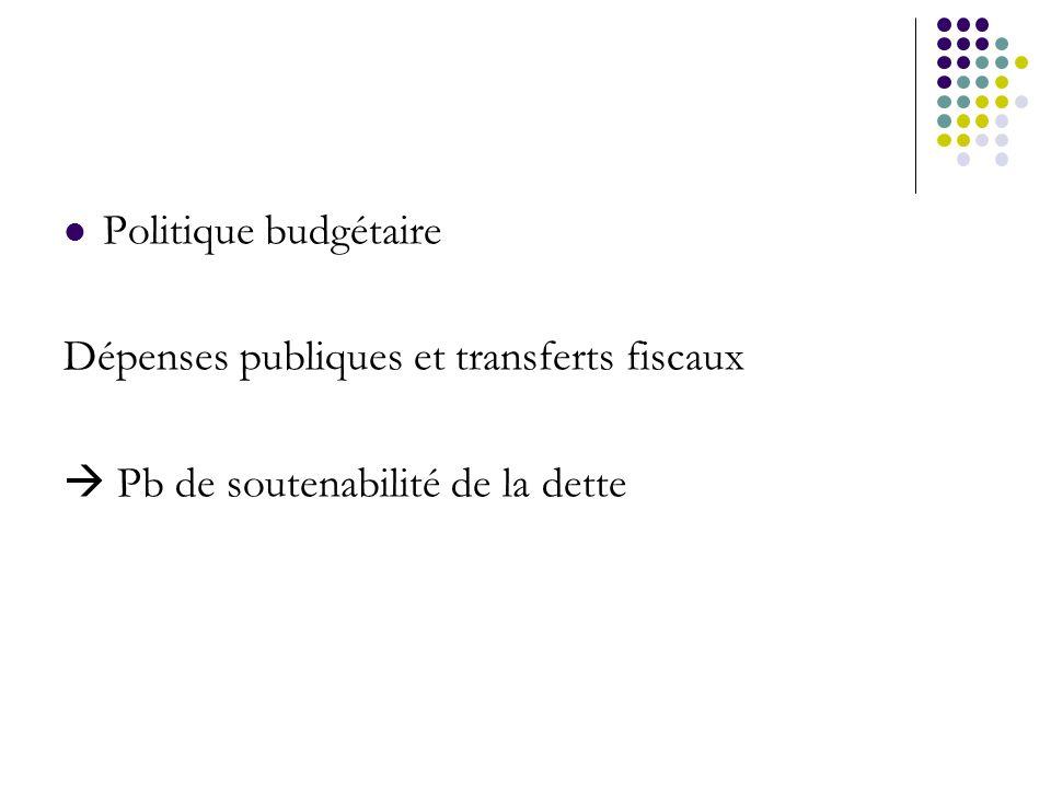 Politique budgétaire Dépenses publiques et transferts fiscaux  Pb de soutenabilité de la dette
