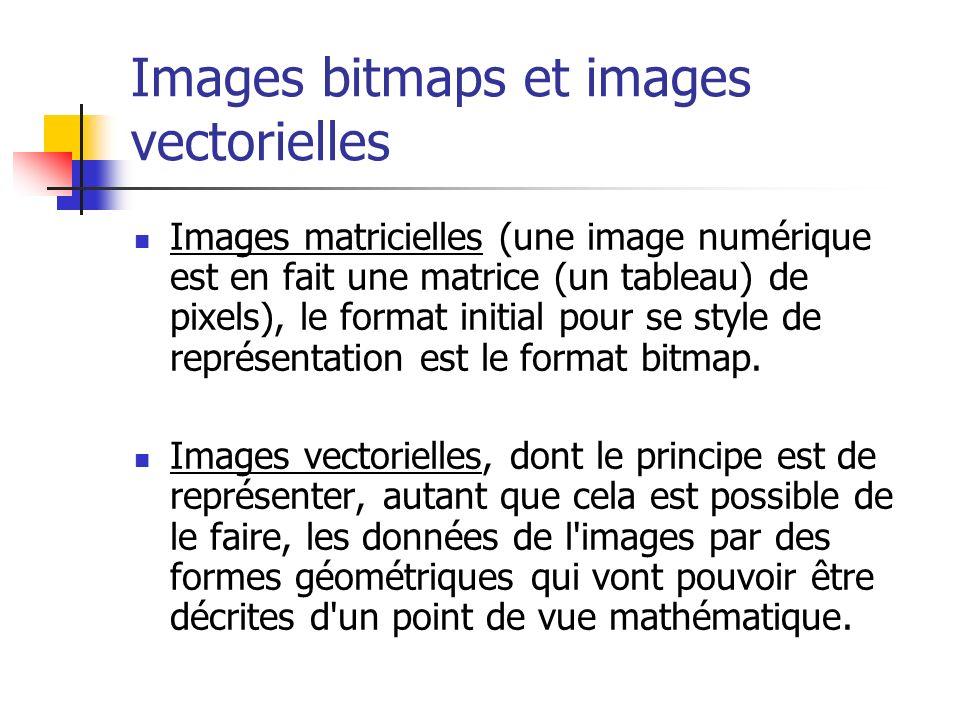 Images bitmaps et images vectorielles