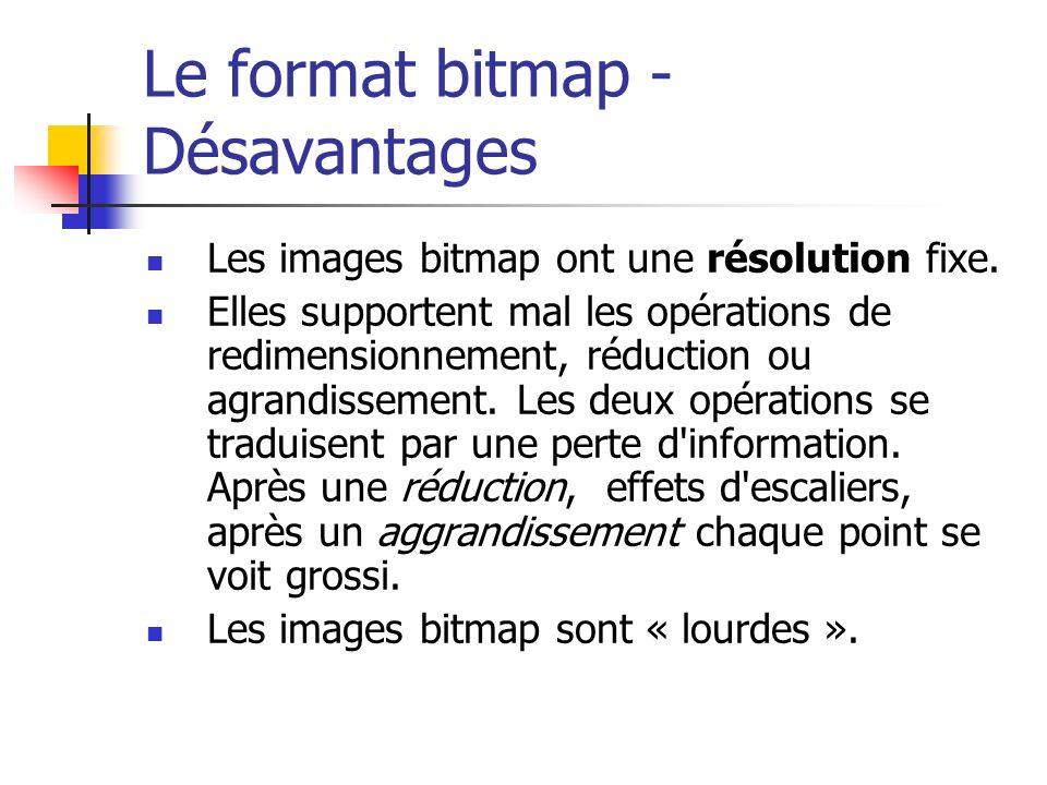 Le format bitmap - Désavantages