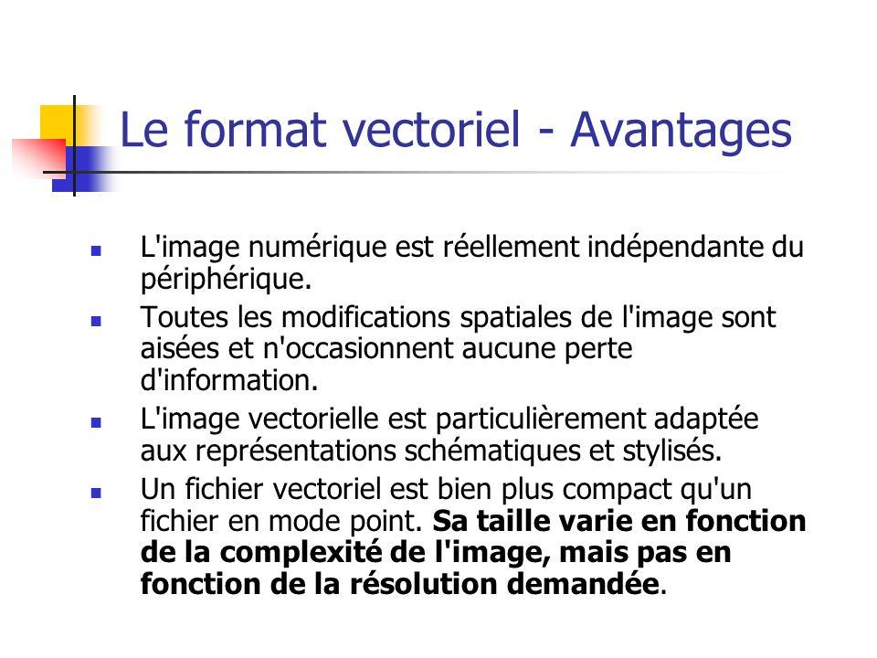 Le format vectoriel - Avantages