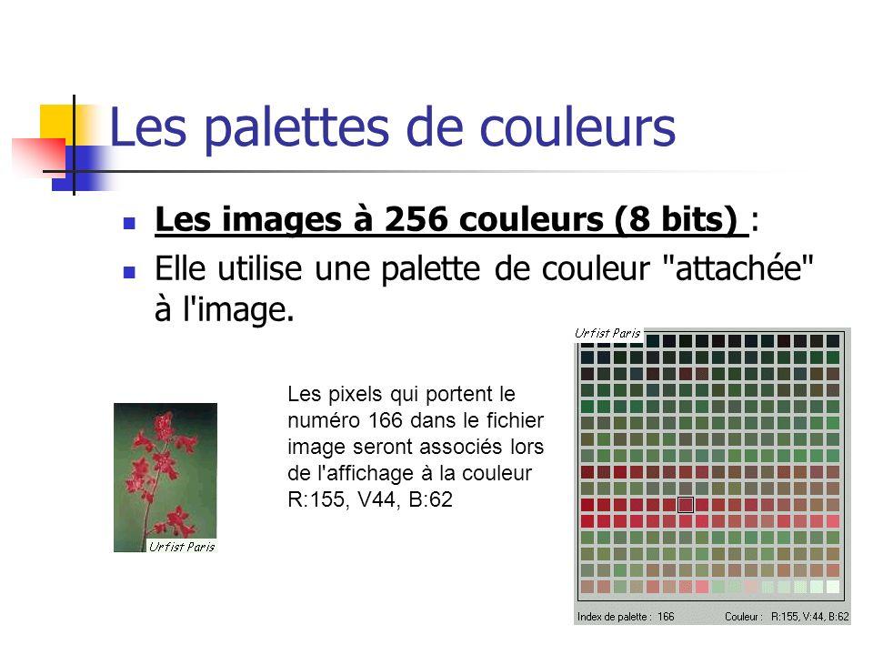 Les palettes de couleurs
