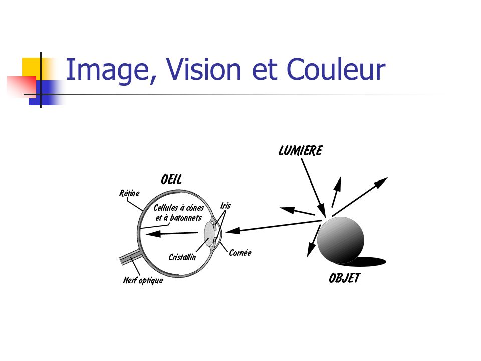 Image, Vision et Couleur