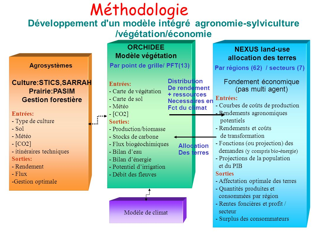 Méthodologie Développement d un modèle intégré agronomie-sylviculture /végétation/économie. ORCHIDEE.
