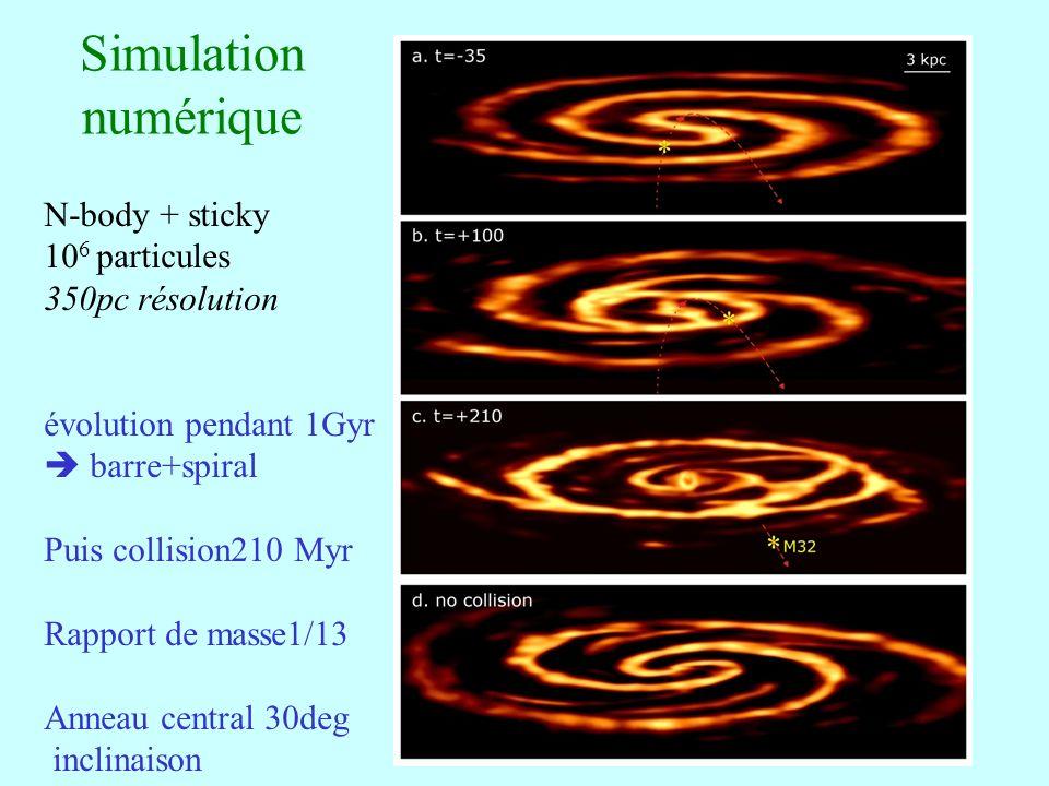 Simulation numérique N-body + sticky 106 particules 350pc résolution