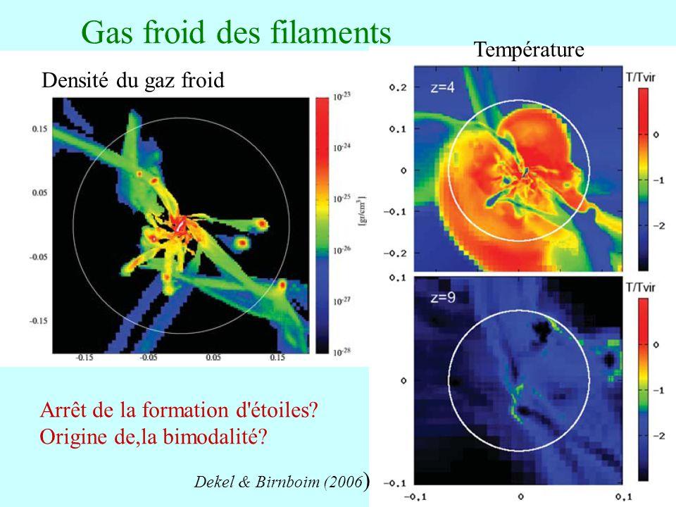 Gas froid des filaments