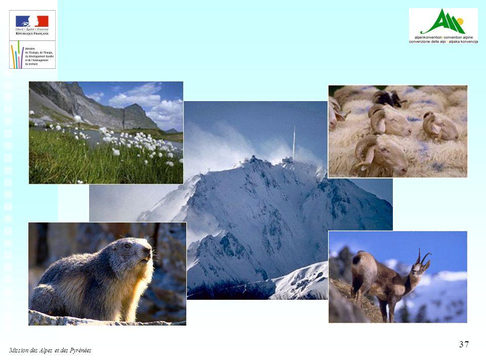 Mission des Alpes et des Pyrénées