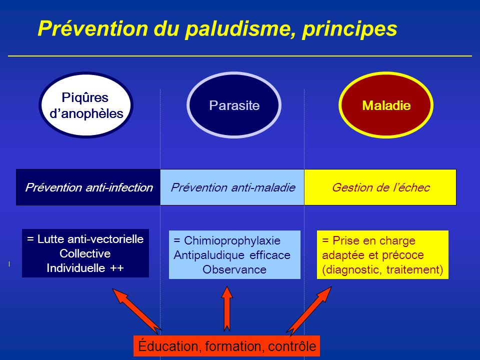 Prévention du paludisme, principes