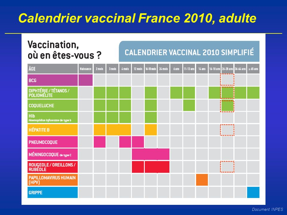 Calendrier vaccinal France 2010, adulte