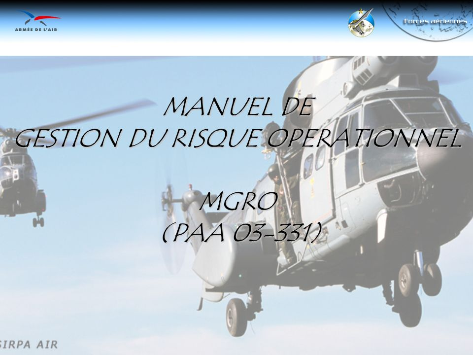MANUEL DE GESTION DU RISQUE OPERATIONNEL MGRO (PAA 03-331)