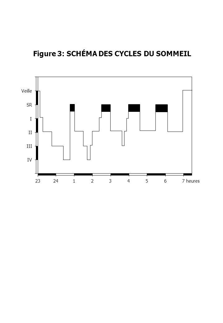 Figure 3: SCHÉMA DES CYCLES DU SOMMEIL