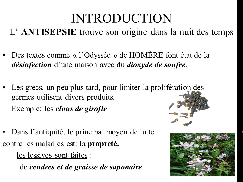 INTRODUCTION L' ANTISEPSIE trouve son origine dans la nuit des temps