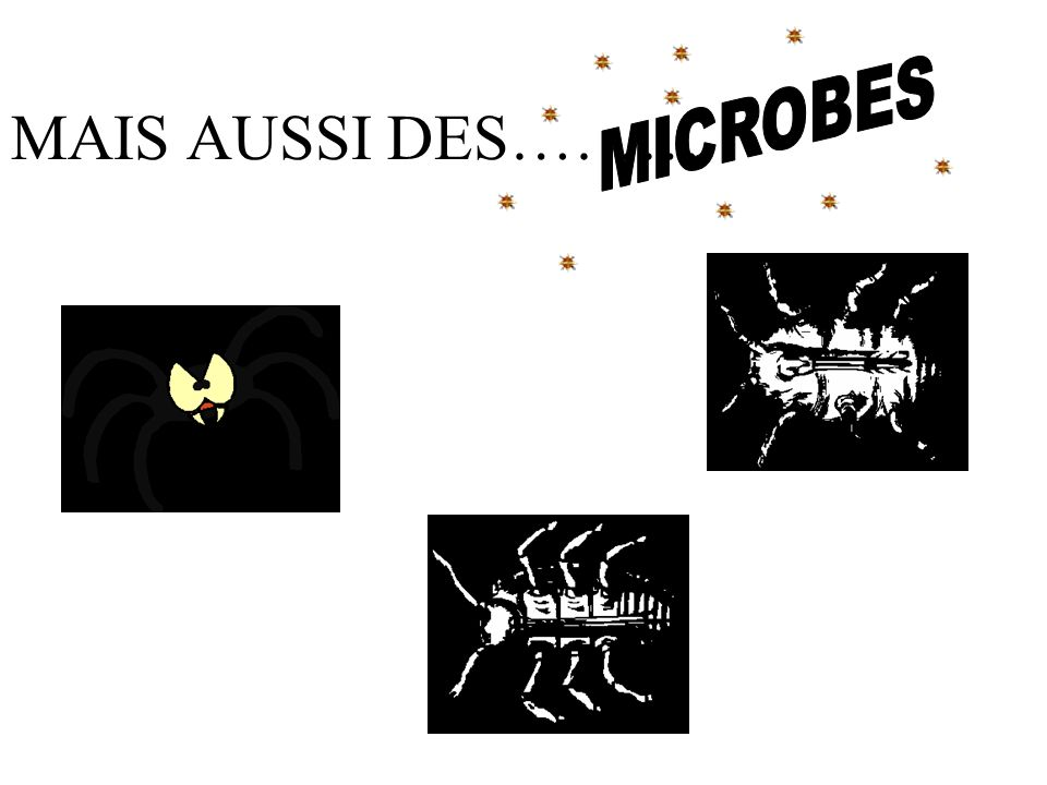 MICROBES MAIS AUSSI DES………