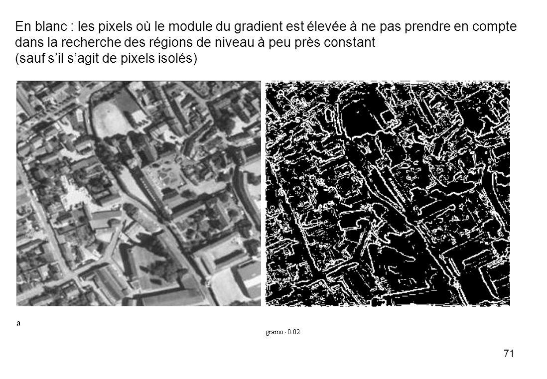 En blanc : les pixels où le module du gradient est élevée à ne pas prendre en compte