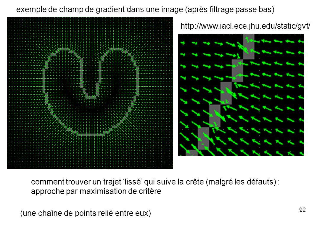 exemple de champ de gradient dans une image (après filtrage passe bas)