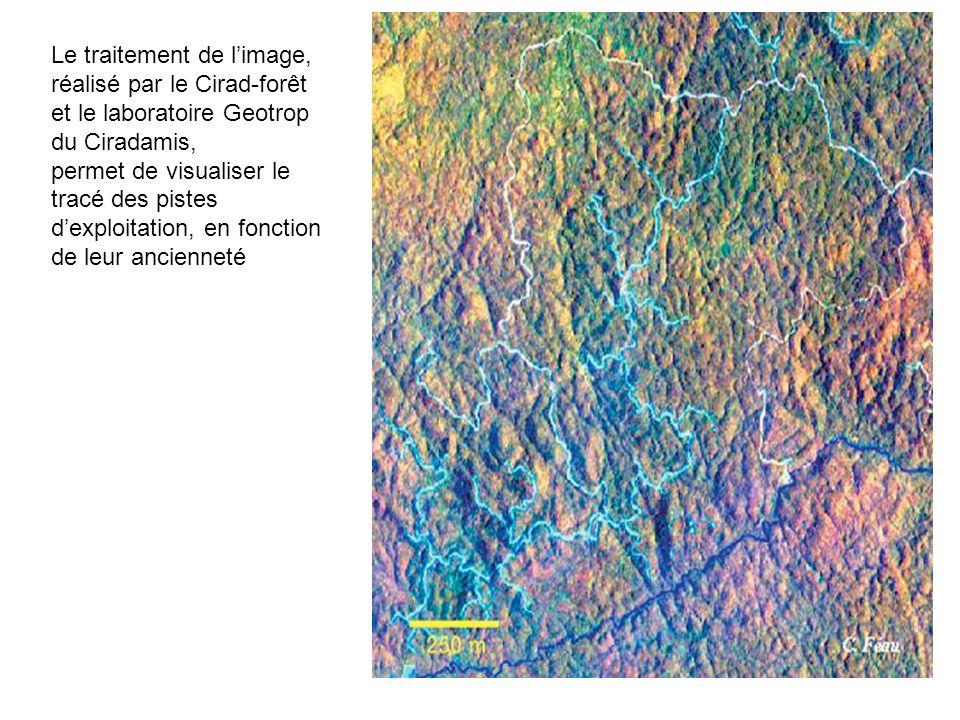 Le traitement de l'image, réalisé par le Cirad-forêt et le laboratoire Geotrop du Ciradamis,