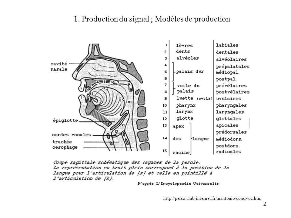 1. Production du signal ; Modèles de production
