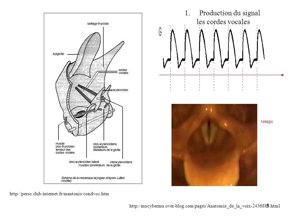 Production du signal les cordes vocales temps