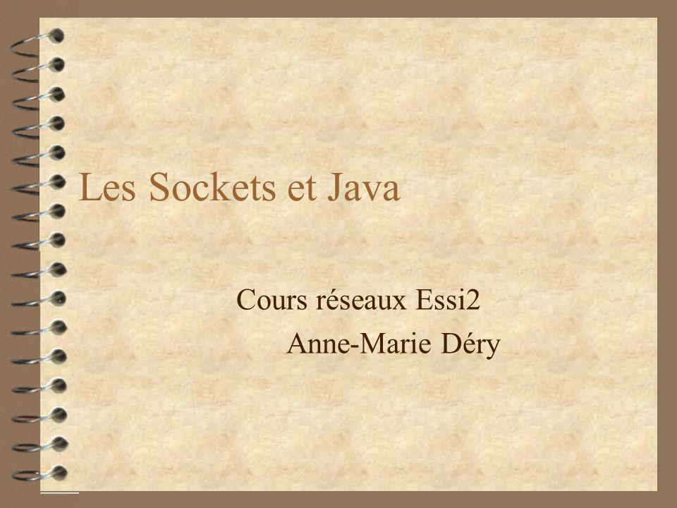 Cours réseaux Essi2 Anne-Marie Déry