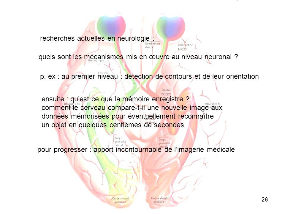 recherches actuelles en neurologie :