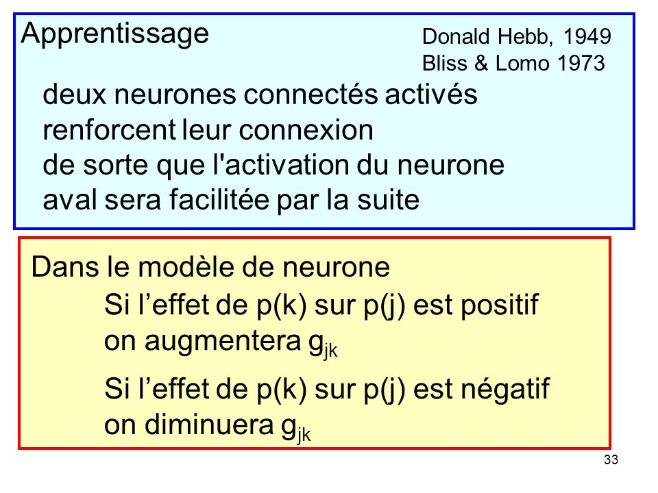 deux neurones connectés activés renforcent leur connexion