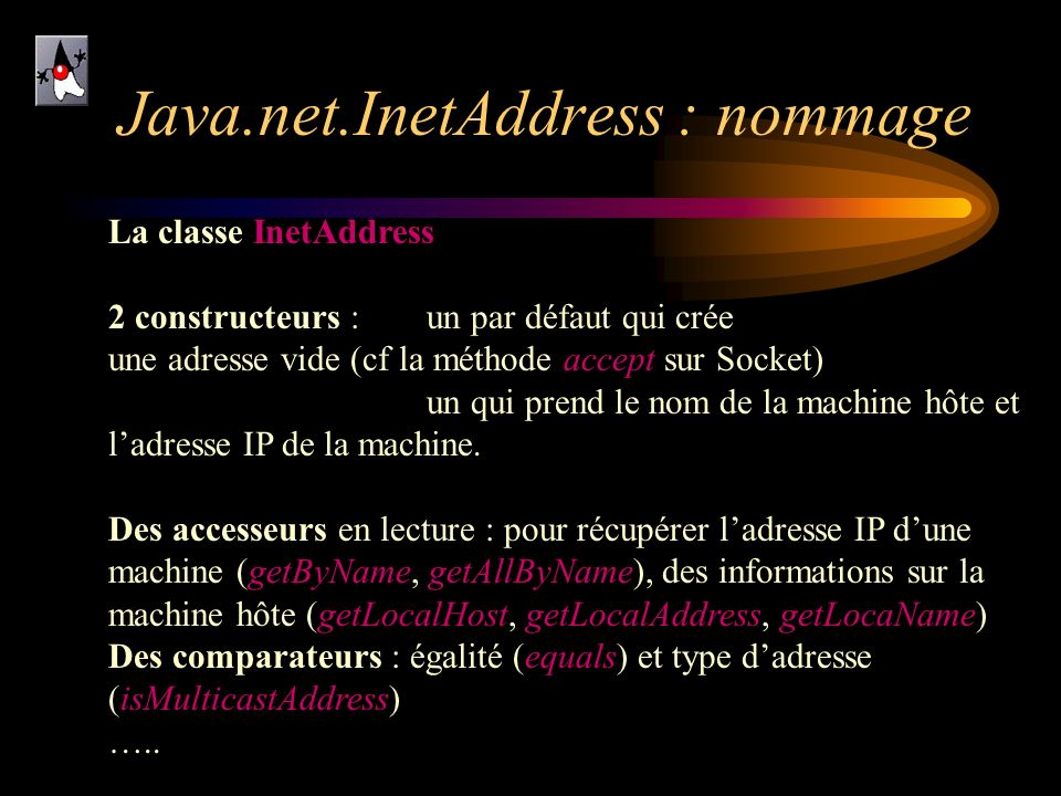 Java.net.InetAddress : nommage
