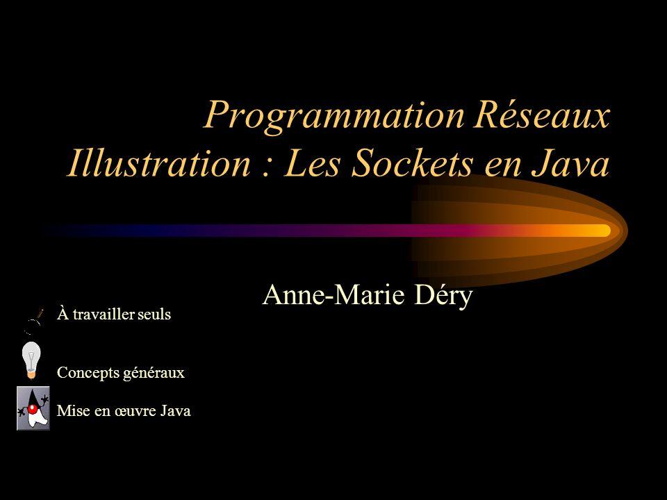 Programmation Réseaux Illustration : Les Sockets en Java