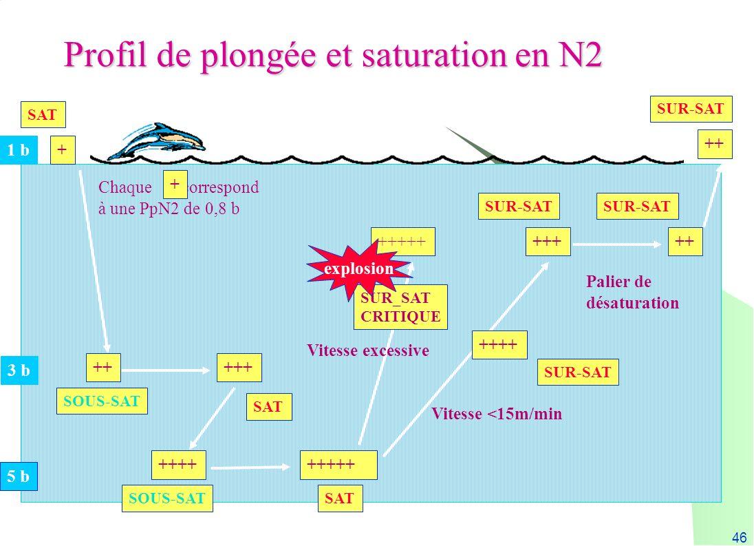 Profil de plongée et saturation en N2